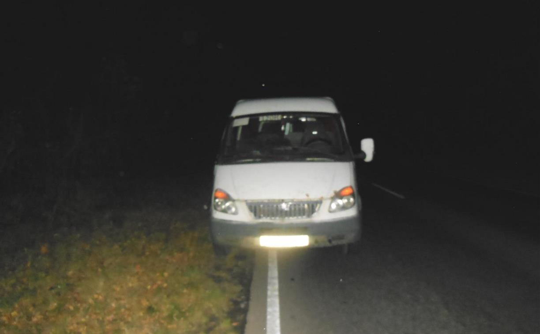 В Тульской области на трассе микроавтобус сбил мужчину