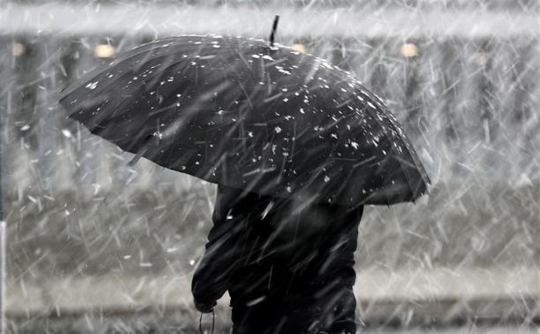 Погода в Туле 22 ноября: мокрый снег и гололед