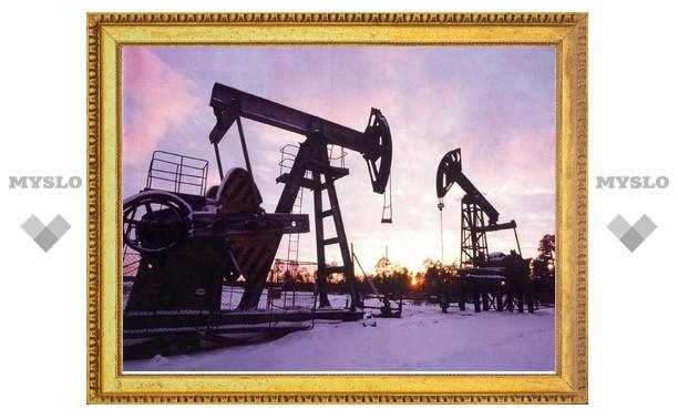 Россия в 2009 году увеличила добычу нефти