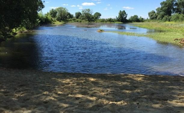 Школьница из Тульской области получила 100 000 рублей на восстановление пруда