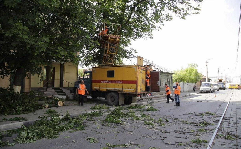 В Туле на улице Оборонной дерево повалило столб ЛЭП