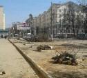 Зачем спилили яблони на ул. Первомайской?