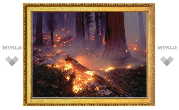 В Суворове возникла угроза пожара