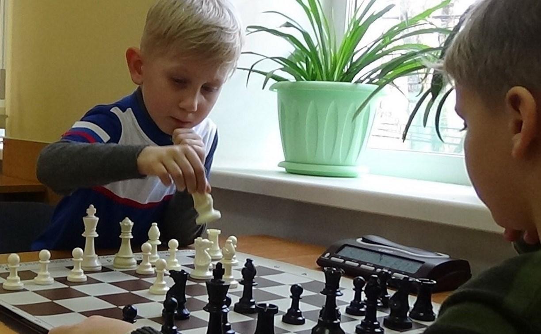 Более 12 тысяч тульских школьников увлеклись шахматами