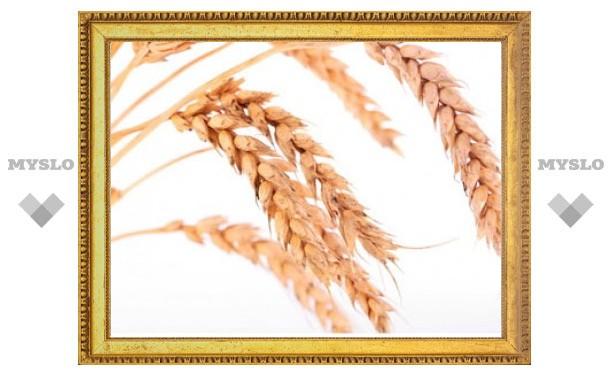 Минсельхоз опроверг информацию о массовом импорте зерна Россией