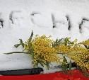 Погода в Туле 8 марта: облачно и скользко, небольшой снег