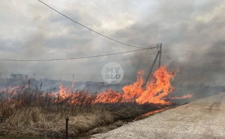 Жители Северного Заречья: «Наши дома может уничтожить огонь с горящих полей!»