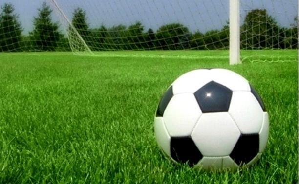 """На стадионе """"Химик"""" запретили проводить футбольные матчи"""