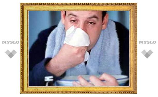 Эпидемии гриппа в Туле нет