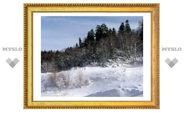 Выходные в Туле: морозно и снежно