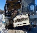 ДТП с шестью пострадавшими в Заокском районе: автобусы выпускали на рейс с неисправностями