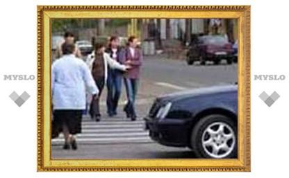 На тульских дорогах страдают пешеходы и велосипедисты