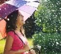 Погода в Туле 25 июля: небольшой дождь с грозой и жара