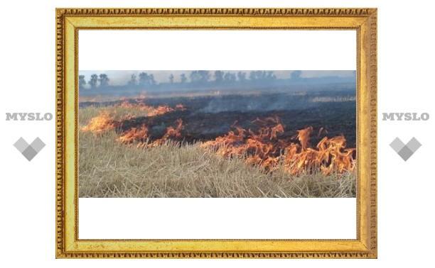Под Тулой горят поля