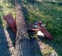 В сквере в Донском спиленные подрядчиком деревья сломали детскую площадку и лавки