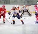 На ледовой арене «Тропик» сыграли легенды хоккея