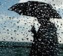 В субботу в Тульской области продолжатся дожди с грозами