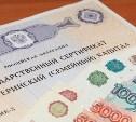 В Госдуме предложили разрешить семьям тратить маткапитал на бытовые нужды