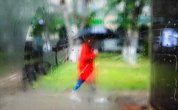 Выходные в Тульской области будут прохладными и дождливыми