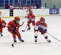 Новомосковск вновь доказал свою любовь к хоккею