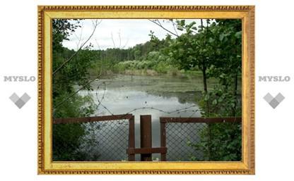 В Киреевске за триста рублей продали пруд и 2500 квадратов земли