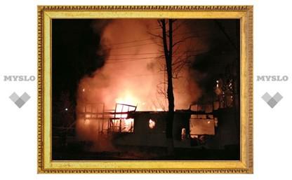 Сотрудники сгоревшего в Туле ветцентра успели вывести всех животных