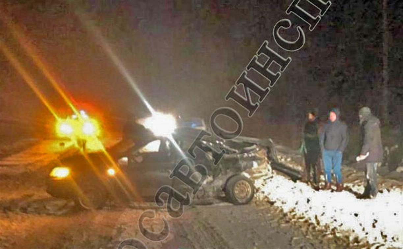 В Суворовском районе лось спровоцировал ДТП с пострадавшими