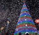 В Белоусовском парке пройдет закрытие новогодней ёлки