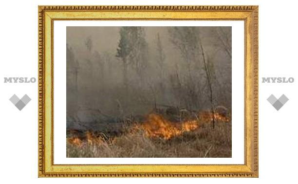В Туве бушуют лесные пожары - 6,5 тысяч гектаров в огне