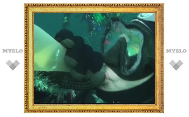 Тульские дайверы на Новый год пьют шампанское прямо под водой
