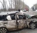 За новогодние каникулы в авариях на тульских дорогах погибли 14 человек