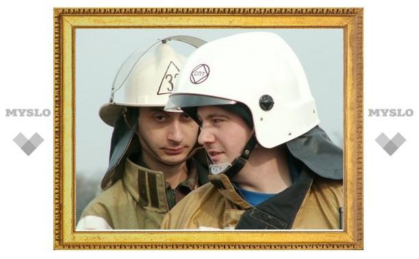 В Алексине под Тулой пожарные спасли из огня целую семью