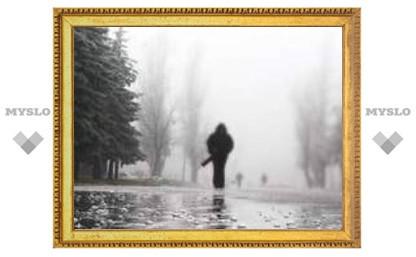 Погода в Туле на ближайшие дни