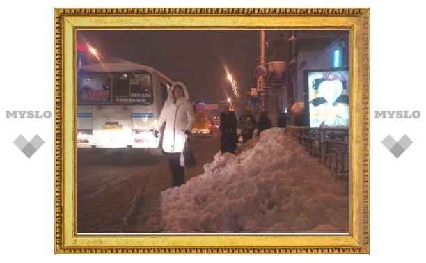 Центральные улицы Тулы не чистили от снега?
