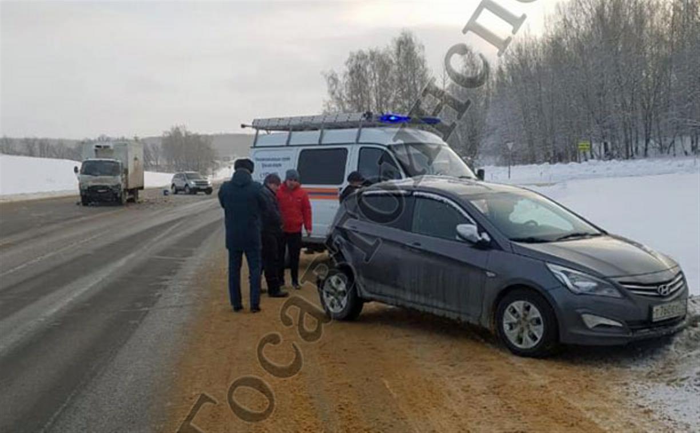 В Щекинском районе в ДТП с грузовиком пострадали мать и дочь