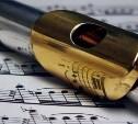 Юная флейтистка представит Тульскую область на международном конкурсе талантов