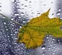 Погода в Туле 14 ноября: облачно, дождливо, до 8 градусов тепла