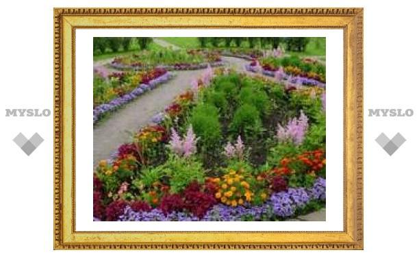 В Туле продолжается посадка цветов