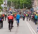 В центре Тулы из-за велопарада перекроют движение транспорта: карта