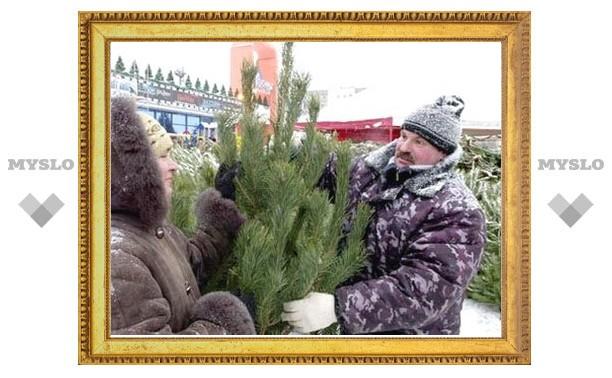 Туляки встретят Новый год под пермскими елками