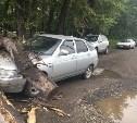 В Туле автомобиль придавило деревом