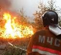 В Тульской области сохраняется 4 класс пожарной опасности