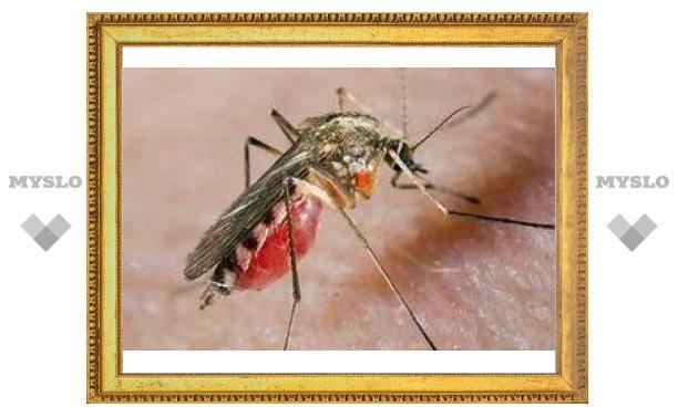 Для прививок от малярии будут использовать комаров