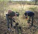 В Белевском районе поисковики нашли останки девяти красноармейцев