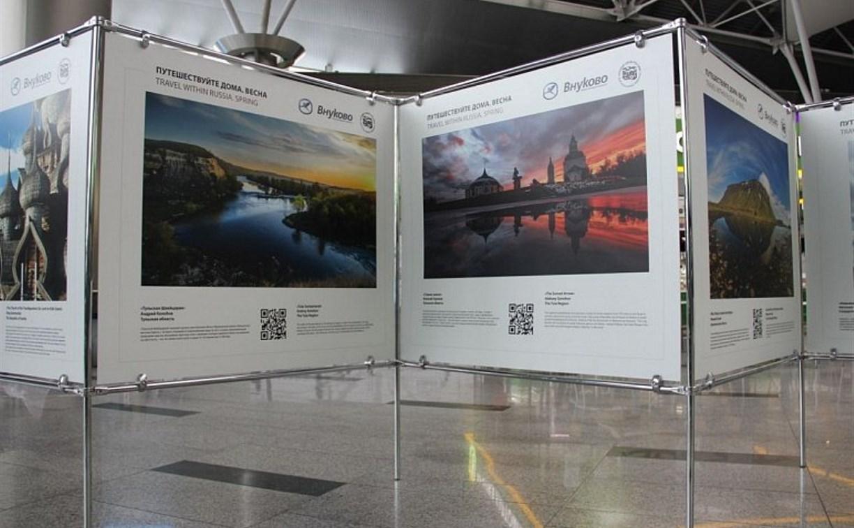 Работы тульских фотографов украсили международный аэропорт «Внуково»