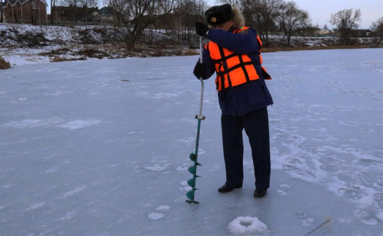 Лёд на пруду в Центральном парке признали безопасным