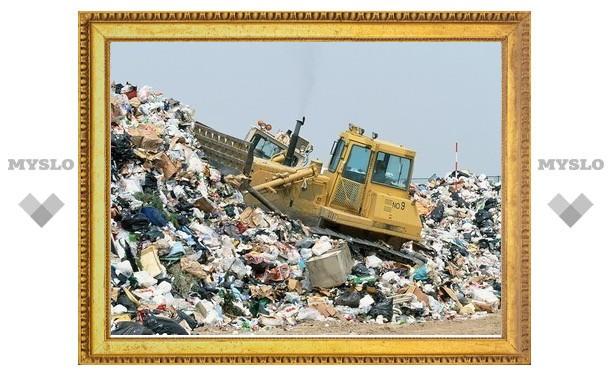 В Туле негде утилизировать мусор