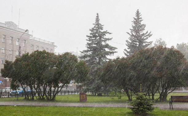 Погода в Туле 31 июля: дождь и гроза