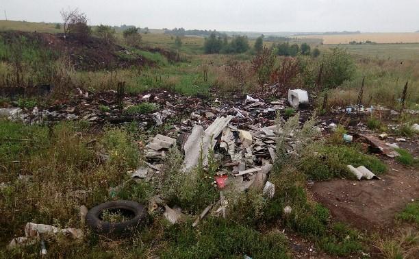 Тульское министерство экологии возбудило дело по факту свалки в Новоселебном