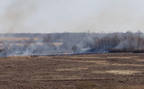 Тульские пожарные совершили 476 выездов на тушение сухой травы